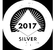 silver pbis award icon